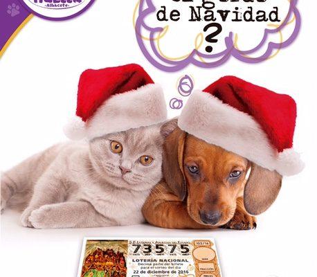 cartel-loteria-navidad-2016