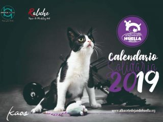 Calendario Solidario de Pared 2019